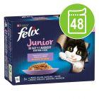 """Felix """"So gut wie es aussieht"""" Junior Pouches 48 x 85 g"""