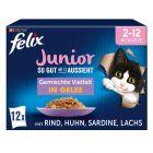 """Felix """"So gut wie es aussieht"""" Junior 48 x 85 g"""