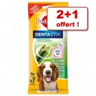 Friandises Pedigree Dentastix Daily Fresh 2 paquets + 1 paquet offert !