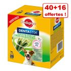 Friandises Pedigree Dentastix Daily Fresh 40 + 16 offertes !