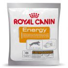 Friandises Royal Canin Energy