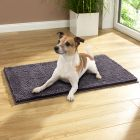 Frinchillo Pet Blanket - Grey