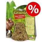 125 g JR Farm Grainless Hay Bell Hibiscus -jyrsijänherkut erikoishintaan!