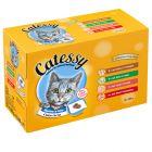 Gemengd pakket Catessy Hapjes in Gelei Kattenvoer