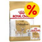 Gemengd pakket: Royal Canin Hondenvoer - Chihuahua Adult