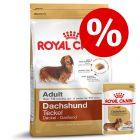 Gemengd pakket: Royal Canin Teckel Adult - Hondenvoer