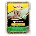 GimCat Hydro-Gras 150 g