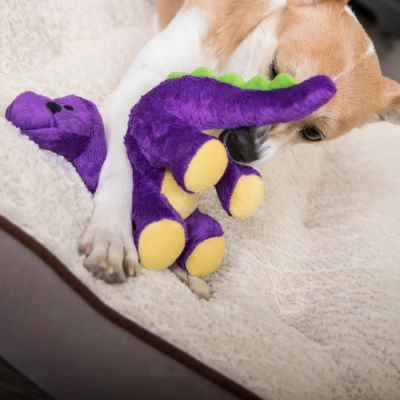 goDog Dinos Bruto the Brontosaurus Dog Toy