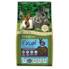 Granulés Burgess Excel à la menthe pour jeune lapin et lapin nain