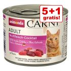 5 + 1 gratis! Animonda Carny Adult pisici 6 x 200 g!