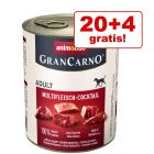 20 + 4 gratis! Animonda GranCarno Original Adult 24 x 800 g