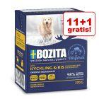11 + 1 gratis! Bozita în gelatină câini, 12 x 370 g