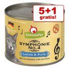 5 + 1 gratis! GranataPet Symphonie, 6 x 200 g