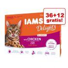 36 + 12 gratis! IAMS Delights, karma mokra dla kota, 48 x 85 g