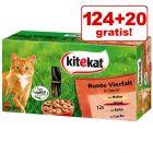 124 + 20 gratis Kitekat raznovrsne vrećice 144 x 100 g