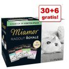 30 + 6 gratis! Mieszany megapakiet Miamor Ragout Royale, 36 x 100 g