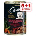5 + 1 gratis! NOU: 6 x 400 g Cesar Natural Goodness