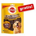Gratis! Pedigree Ranchos Originals, kurczak, 70 g