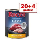 20 + 4 gratis! Rocco mokra karma dla psa, 24 x 800 g