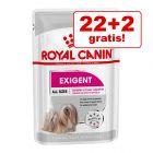 22 + 2 gratis! Royal Canin CCN pliculețe câini, 24 x 85 g
