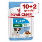 10+2 gratis! Royal Canin Pliculețe Câini Rase Mici