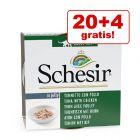 20 + 4 gratis! Schesir pločevinke v želeju 24 x 85 g