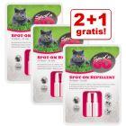 2 + 1 gratis! Spot'n Go Zecken- und Flohschutzmittel für Katzen