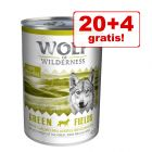 20 + 4 gratis!  Wolf of Wilderness mokra hrana 24 x 400 g