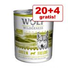 20 + 4 gratis! Wolf of Wilderness 24 x 800 g