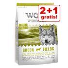 2 + 1 gratis! Wolf of Wilderness 3 x 1 kg