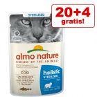 20 + 4 gratis! 24 x 70 g Almo Nature Holistic umido per gatti