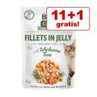 11 + 1 gratis! 12 x 85 g  Brit Care Cat Fileuri în gelatină pisici
