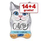 14 + 4 gratis! 18 x 85 g Catessy Paté!