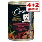 4 + 2 gratis! 6 x 400 g Cesar Natural Goodness