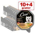 10 + 4 gratis! 14 x 150 g Cesar Selection alubakker