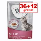 36 + 12 gratis! 48 x 85 g Concept for Life