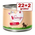 22 + 2 gratis! 24 x 200 g Feringa Kitten