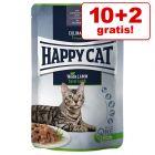 10 + 2 gratis! 12 x 85 g Happy Cat Pouch Meat in Sauce