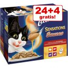 20 + 4 gratis! 24 x 100 g Latz Sensations poser