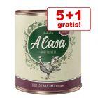5 + 1 gratis! 6 x 800 g Lukullus A Casa Nassfutter