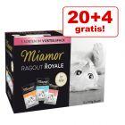 20 + 4 gratis! 24 x 100 g Miamor Ragù Royal misto