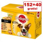 152 + 40 gratis! 192 x 100 g Pedigree Multipack Vital Protection
