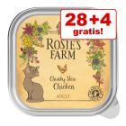 28 + 4 gratis! 32 x 100 g Rosie's Farm