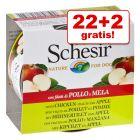 22 + 2 gratis! 24 x 150 g Schesir Hrană umedă