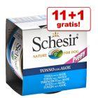 11 + 1 gratis! 12 x 150 g Schesir Hrană umedă câini