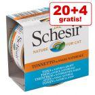20 + 4 gratis! 24 x 70 g Schesir in natürlicher Sauce