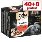 40 + 8 gratis! 48 x 85 g Sheba Katzenfutter