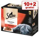 10 + 2 gratis! 12 x 85 g Sheba Katzenfutter