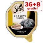 36 + 8 gratis! 44 x 85 g Sheba Skåler Kattemat