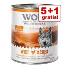 5 + 1 gratis! 6 x 800 g Wolf of Wilderness